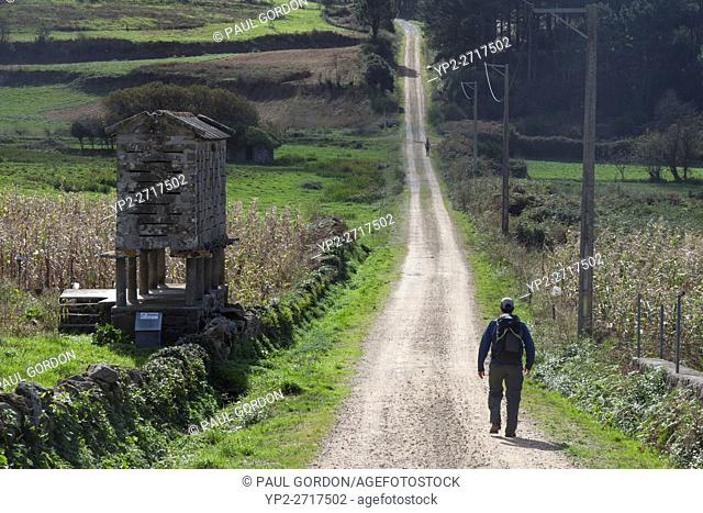 Castrexe, Spain: Pilgrim passes a stone granary (hórreo) along the Camino Finisterre between Muxia and Finisterre