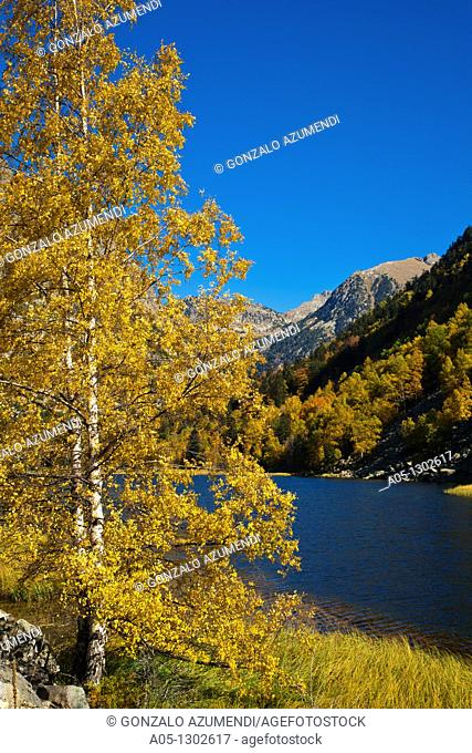 La Lludriga route  Otter route Estany Llebreta  Llebreta lake. Aigüestortes i Estany de Sant Maurici National Park, Pyrenees Mountains, Boi-Taull Valley