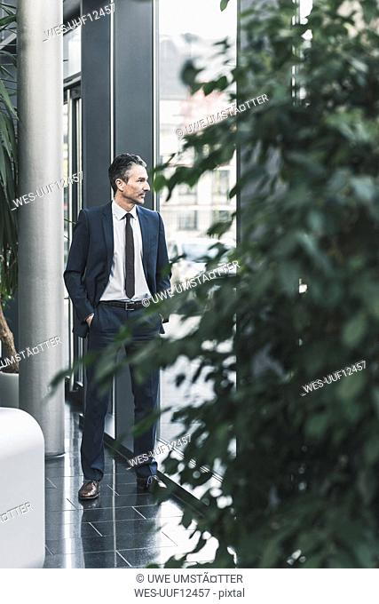 Businessman standing in office lobby looking out of window