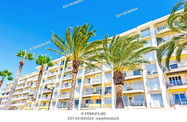 Daylight sunny wide view to yellow hotel balconies on palm trees background. Bright blue clear sky. Negative copy space and place for text