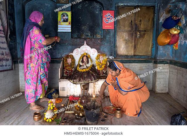 India, Rajasthan state, Jaipur, the Galta temple dedicated to the monkey god Hanuman