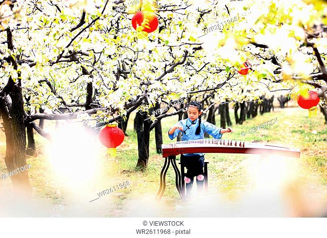 Pretty girl playing guzheng in flowers