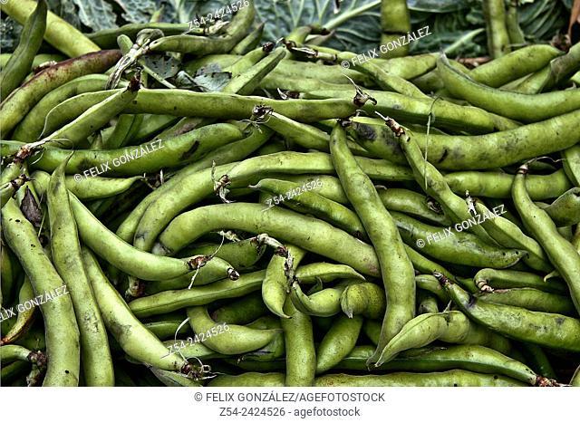 Peas at Grado street market, Asturias, Spain
