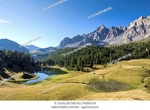 France, Hautes Alpes, Parc Naturel Regional du Queyras (Natural regional park of Queyras), Ceillac, lake des prés Soubeyrand or lake Mirror (2214m) dominated by...