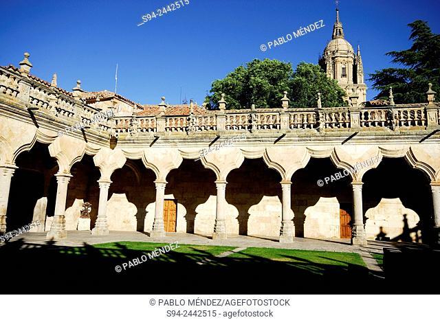 Patio of the Schools in the University of Salamanca, Spain