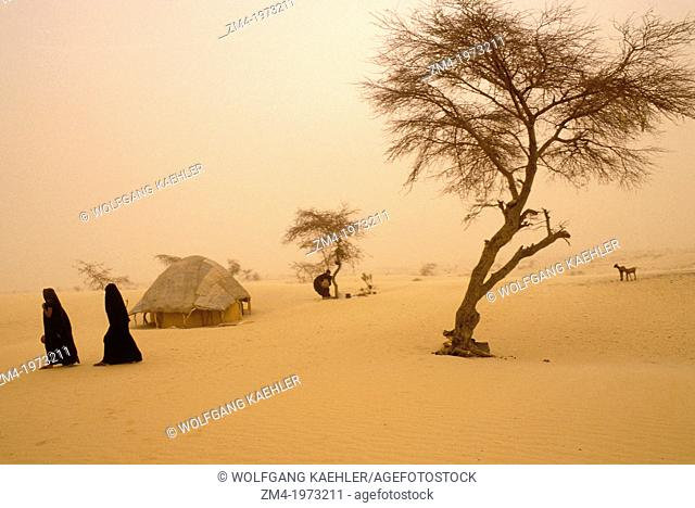 MALI, NEAR TIMBUKTU, TUAREG CAMP IN HARMATTAN DUST STORM, EDGE OF SAHARA