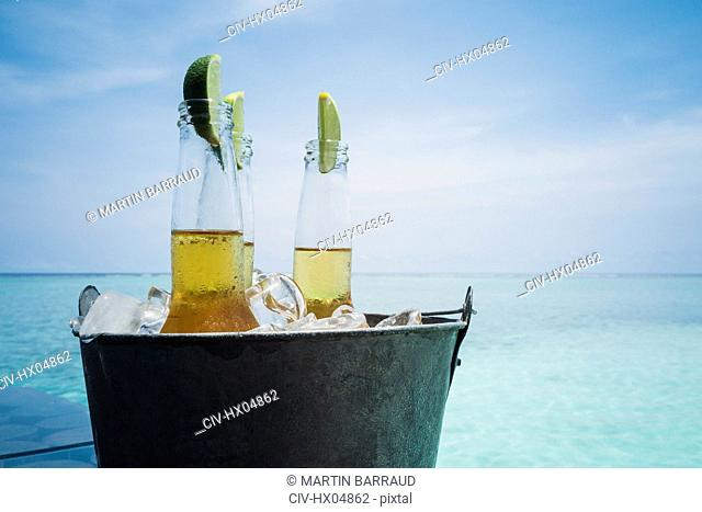 Lime slices in beer bottles on ice on tranquil ocean beach, Maldives, Indian Ocean