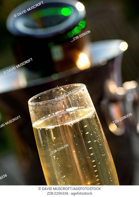 Close up of bubbles in a glass of champagne