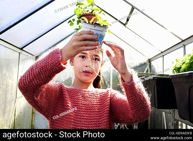 Girl holding plant pot, looking at roots