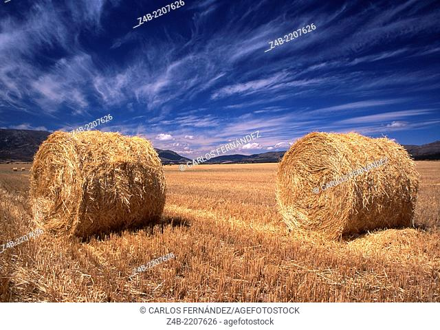 Agricultural landscape, Avila, Spain. Hay bales after the harvest time