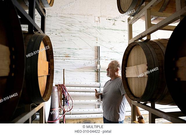 Senior male vintner in winery barrel room