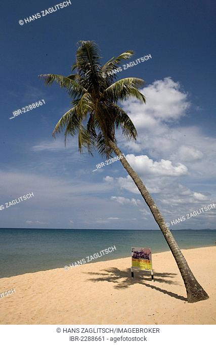 Palm and a billboard on Long Beach, Phu Quoc Island, Vietnam, Southeast Asia, Asia