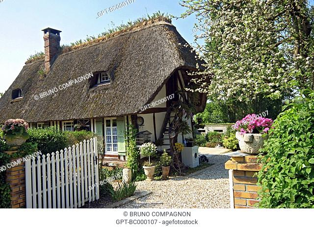 THATCHED ROOF, MARAIS VERNIER, NORMANDY HOUSE, SECOND HOME, EURE 27, FRANCE