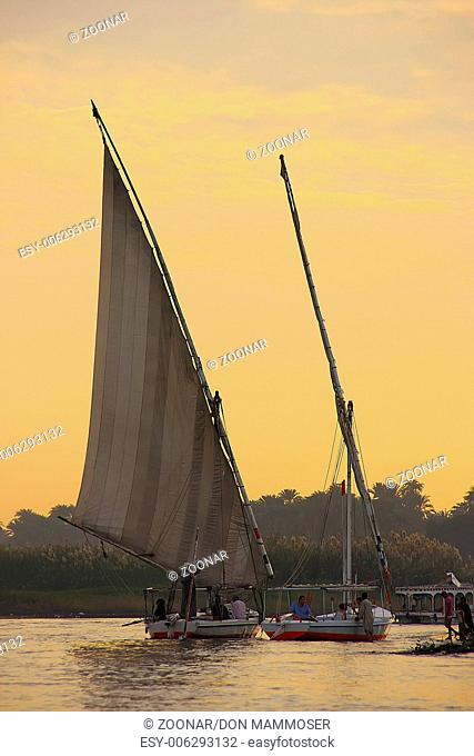 Felucca boats sailing on the Nile river at sunset