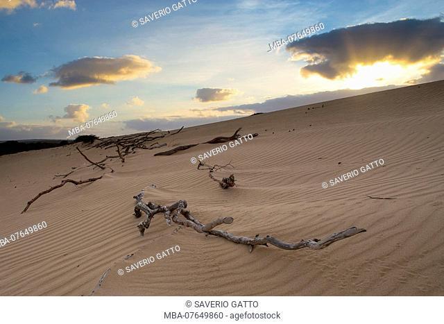 Sand Dunes, Boavista, Cape Verde, Sunrise, dawn