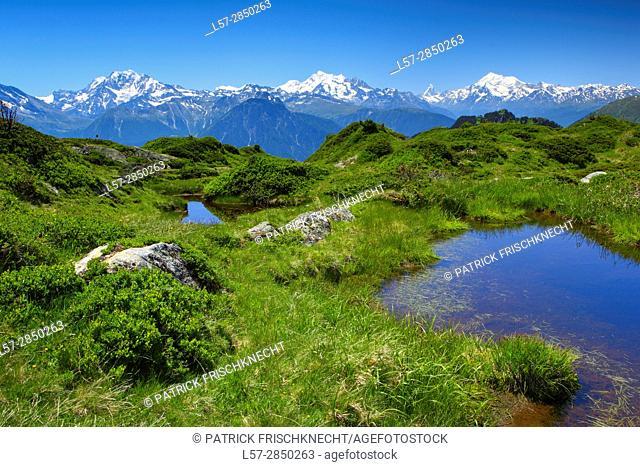 Swiss alps, Mischabelgruppe , Matterhorn, Weisshorn, Wallis, Switzerland