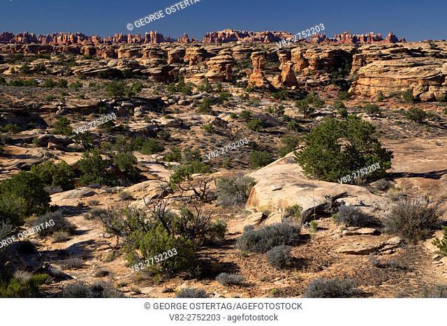 View along Slickrock Foot Trail, Canyonlands National Park, Utah