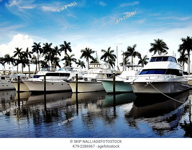 Luxury boats at a marina in Florida