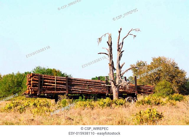 Logging Trailer - Florida