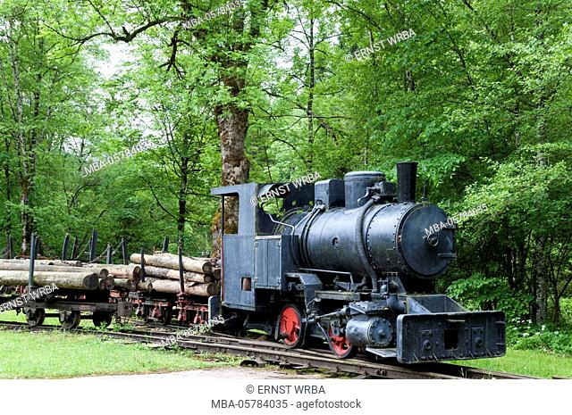 Locomotive, former forest railway, Hintergebirgs cycle track, Kalkalpen National Park, Upper Austria, Austria