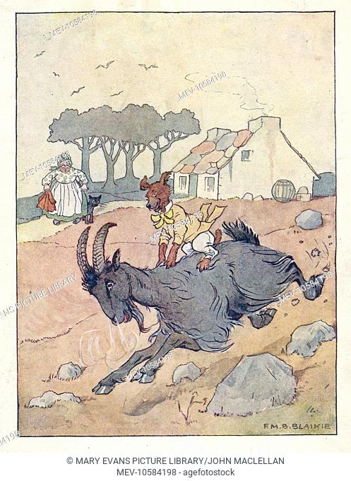 Nursery Rhymes -- Old Mother Hubbard. She went to the tailor's to buy him a coat, but when she came back he was riding the goat