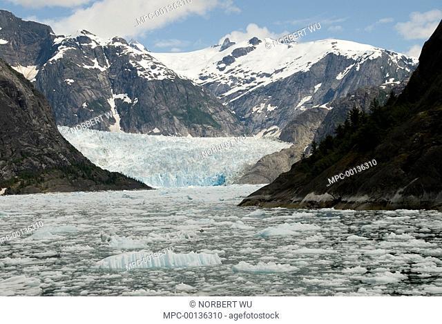 LeConte Glacier is receding showing evidence of global warming, LeConte Bay, Alaska