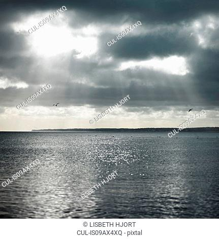 Sunbeams through clouds over ocean
