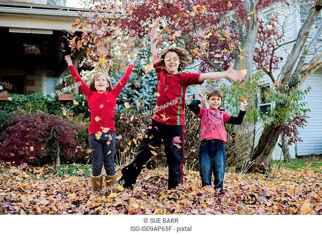 Three siblings playing with autumn leaves in garden