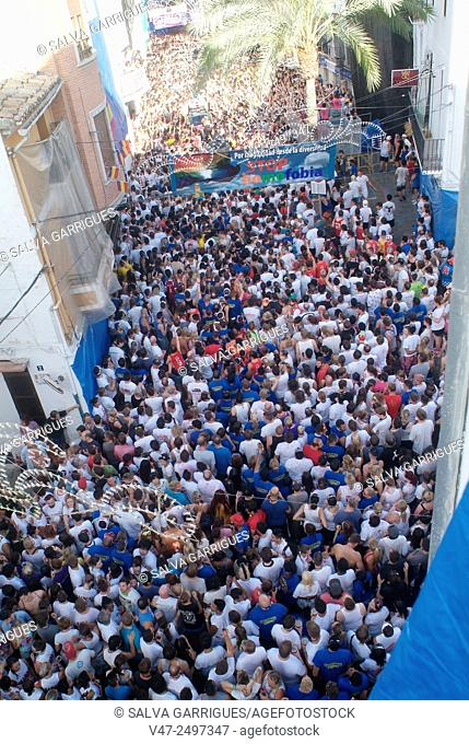 150 tons of tomatoes serve as ammunition for traditional Tomatina, a battle which attracted this year more than 22,000 people of 96 different nationalities to...