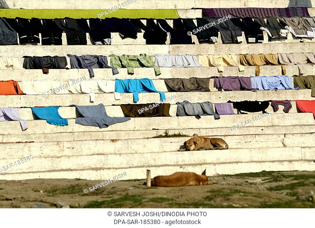 Washed clothes are drying on steps in Varanasi Ghat Uttar Pradesh India