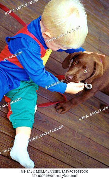 Little boy and chocolate Labrador retriever