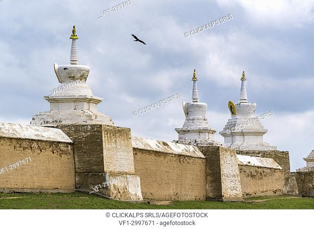 Mongolian eagle flying above Erdene Zuu monastery. Harhorin, South Hangay province, Mongolia