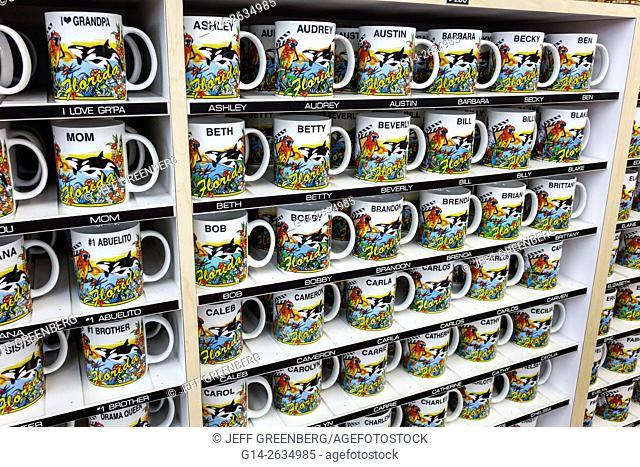 Florida, FL, Orlando, Kissimmee, shopping, Crazy Wizard Gift Shop, souvenirs, mugs