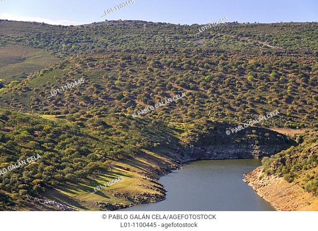 Reservoir Torrejón, Cáceres