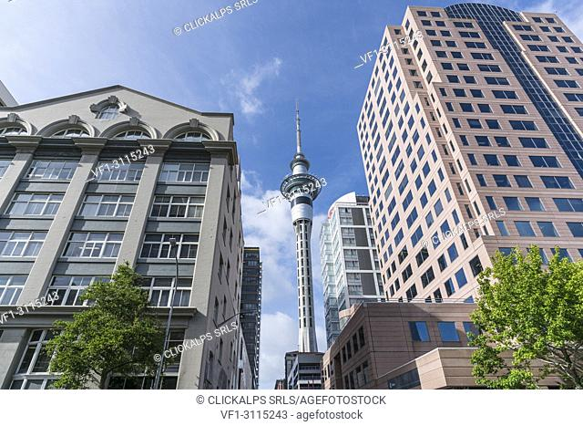 Auckland CBD with Sky Tower in the middle. Auckland City, Auckland region, North Island, New Zealand