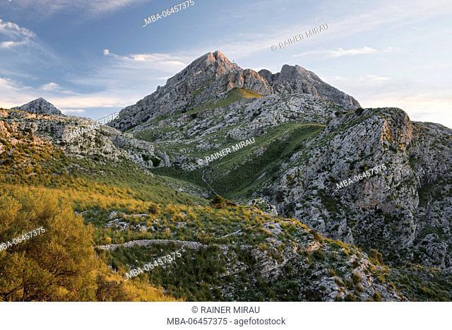 Puig major, Coll de Cals Reis, Serra de Tramuntana, Majorca, the Balearic Islands, Spain