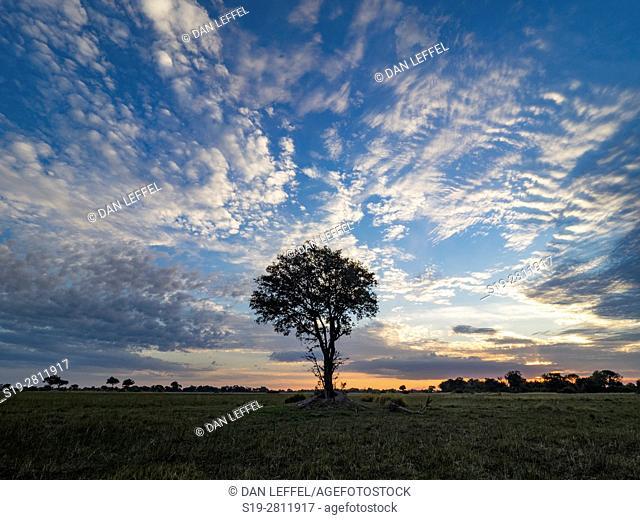 Botswana. Scenic