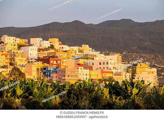 Spain, Canary Islands, La Palma island declared a Biosphere Reserve by UNESCO, Los Llanos de Aridane, the town is surrounded by banana plantations