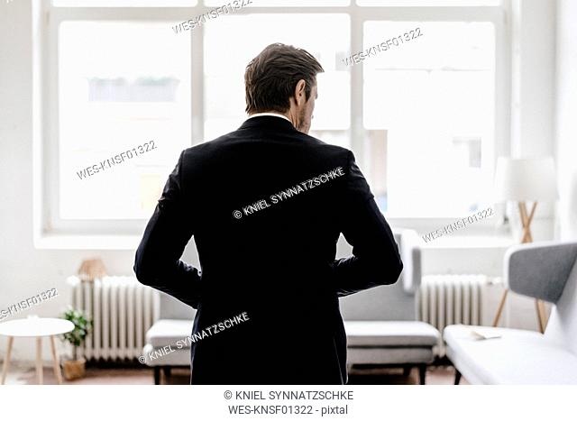 Rear view of businessman in office