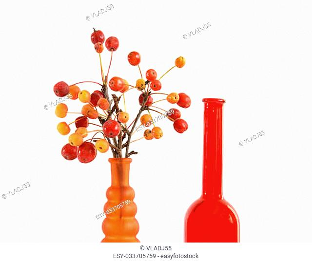 Still life of a branch with small apples in colored glass vase