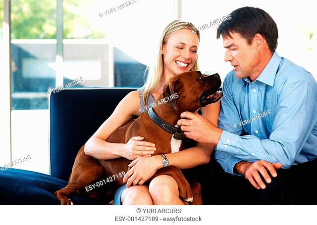 Portrait of a smiling young couple sitting on sofa with their dogs at home - Indoor