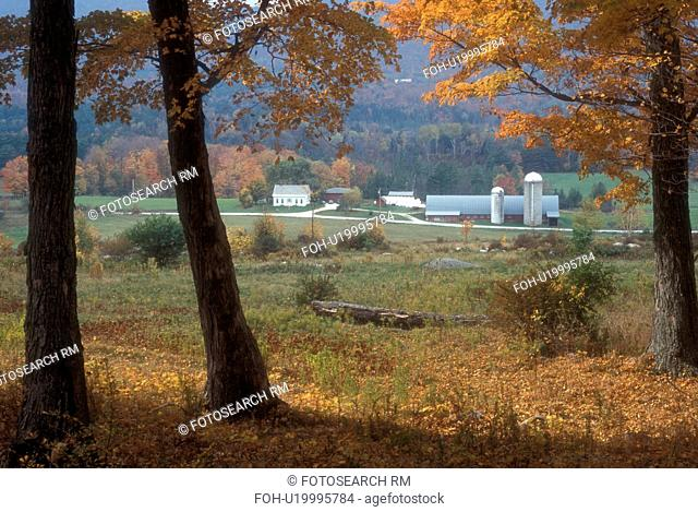 farm, fall, Tinmouth, VT, Vermont, Scenic view of a farm in autumn in Tinmouth