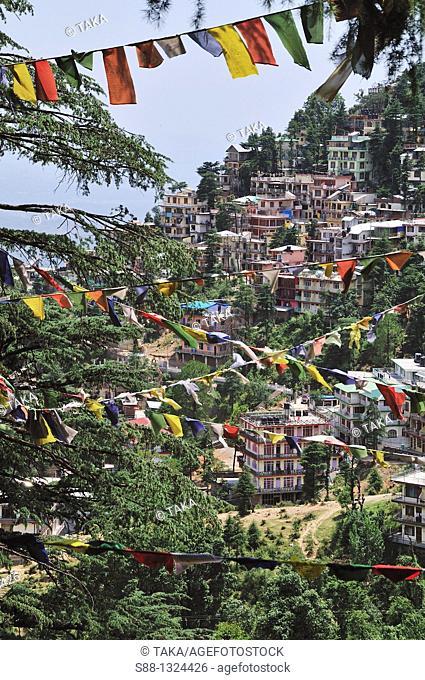 View of McLeod Ganj, Dharamsala, India