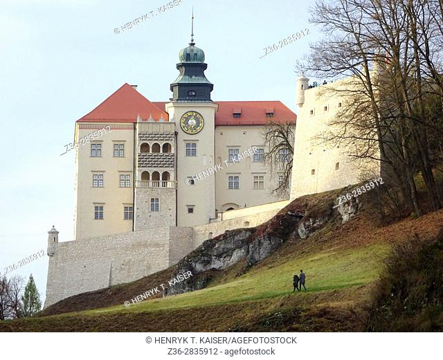 Castle in Pieskowa Skala, Ojcow National Park, Poland