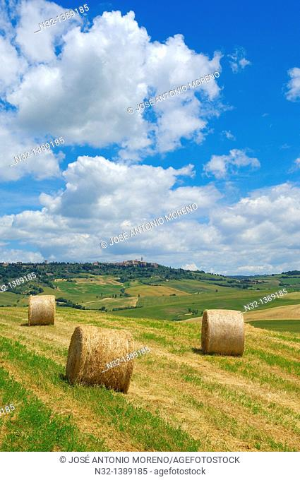 Val d'Orcia, Orcia Valley, Fields with straw bales, Pienza, Siena Province, Tuscany, Italy