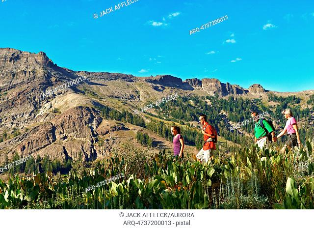 A family enjoys the beauty of a Summer hiking adventure