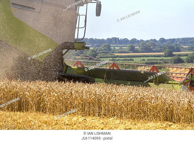 Close Up Of Combine Harvester Harvesting Wheat Crop In Field