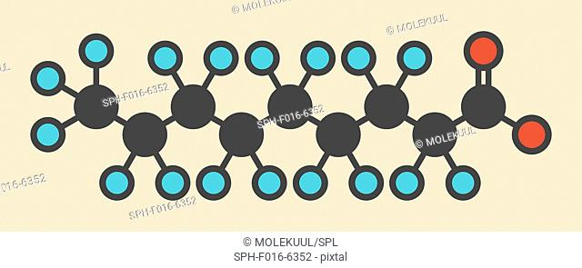 Perfluorononanoic acid (PFNA, perfluorononanoate) surfactant molecule. Stylized skeletal formula (chemical structure). Atoms are shown as color-coded circles:...
