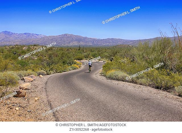 Cyclist in the Saguaro East Rincon Mountain National Park in Tucson, Arizona