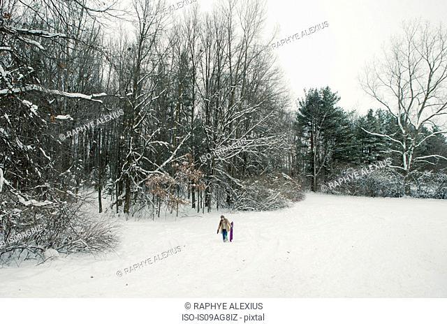 Woman carrying toboggan in snow, Petersburg, Michigan, USA